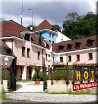 Cheap accommodation in Prague - Hoffmeister